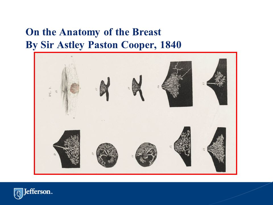 On the Anatomy of the Breast By Sir Astley Paston Cooper, 1840