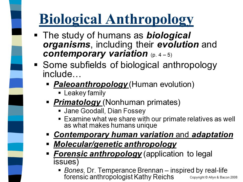 bio anthro Physical or biological anthropology deals with the evolution of humans, their  variability, and adaptations to environmental stresses using an.