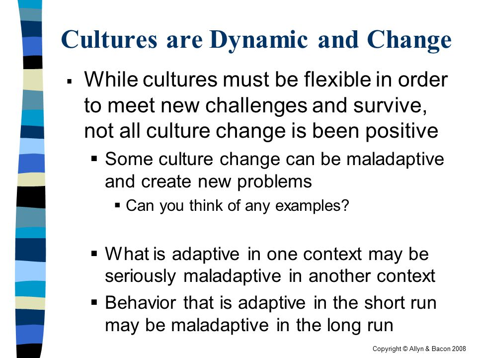 Cultures are Dynamic and Change