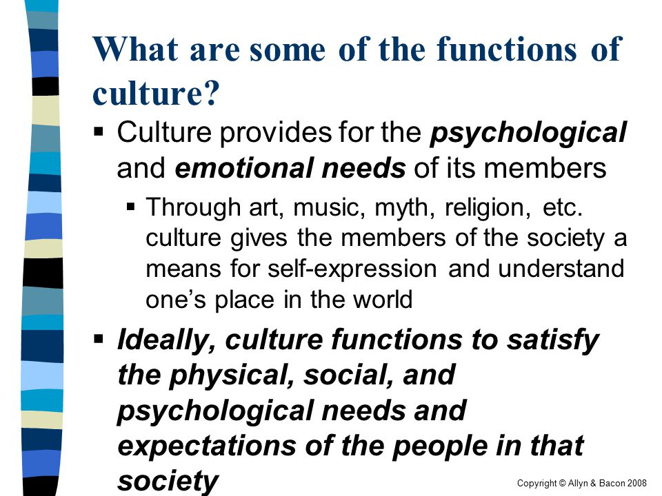 What are some of the functions of culture