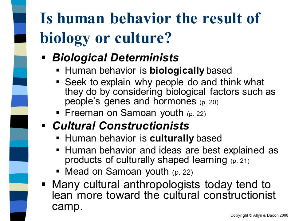 Is human behavior the result of biology or culture