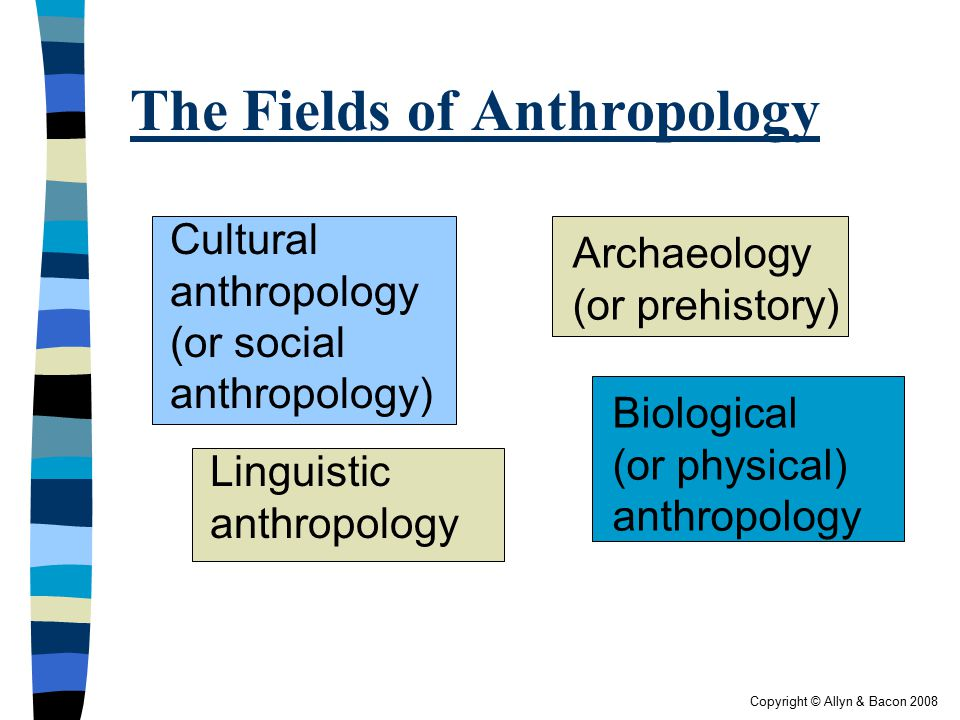 The Fields of Anthropology