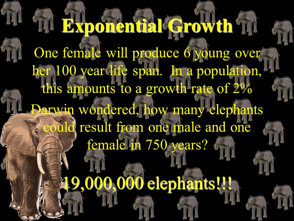 Exponential Growth 19,000,000 elephants!!!