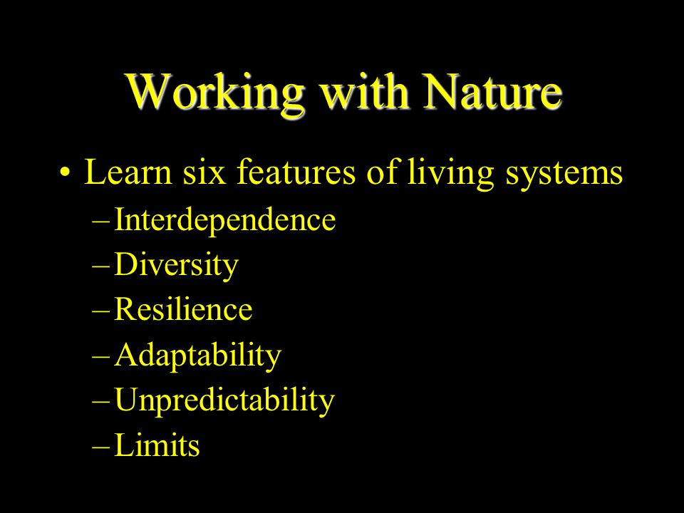 Working with Nature Learn six features of living systems