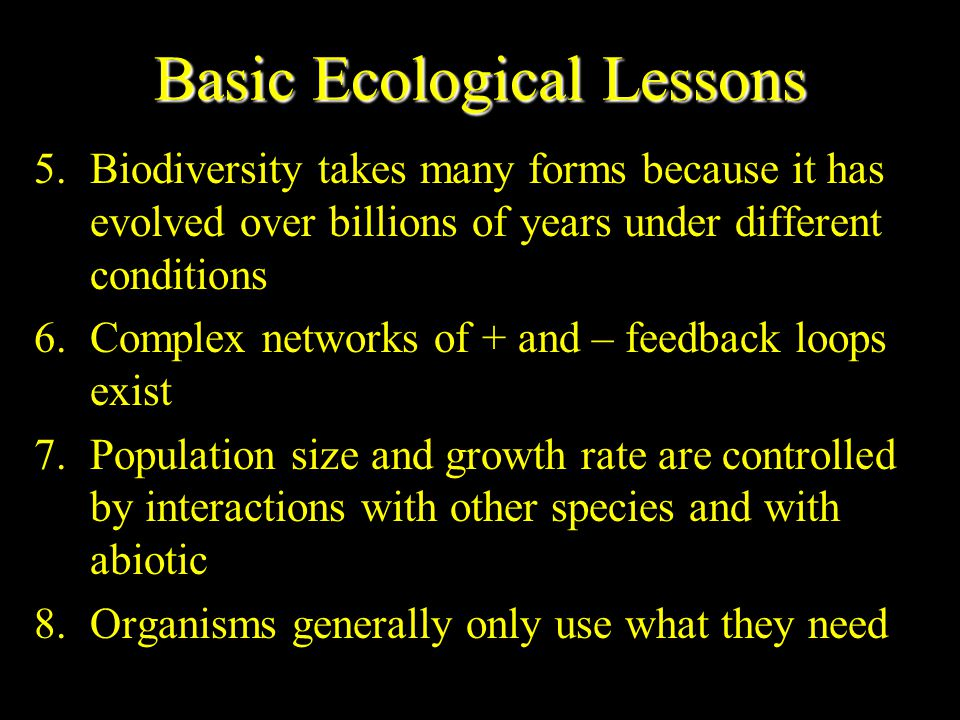 Basic Ecological Lessons