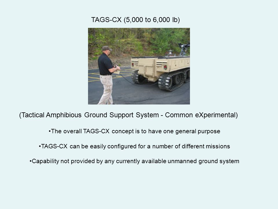 (Tactical Amphibious Ground Support System - Common eXperimental)