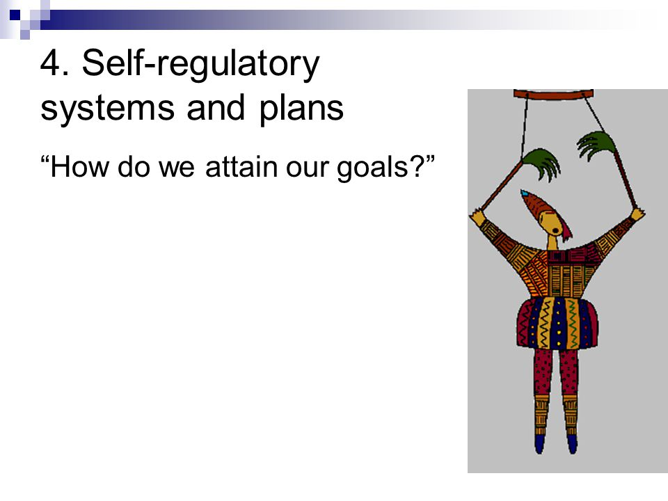 4. Self-regulatory systems and plans
