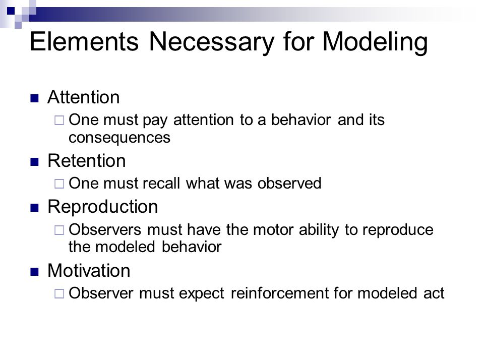 Elements Necessary for Modeling