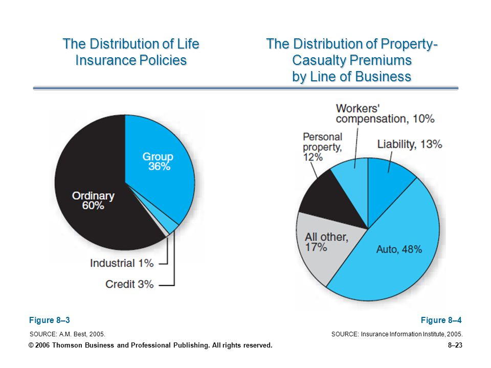 The Distribution of Life Insurance Policies