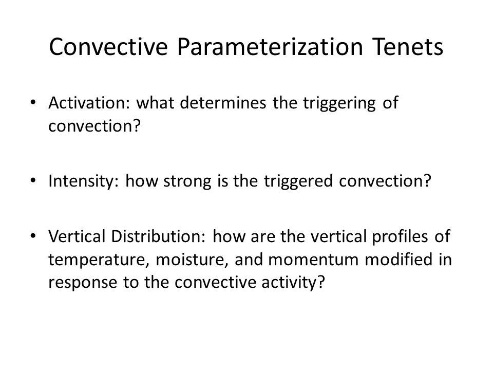 Convective Parameterization Tenets
