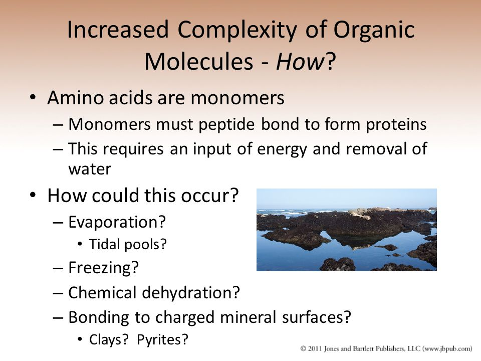Increased Complexity of Organic Molecules - How