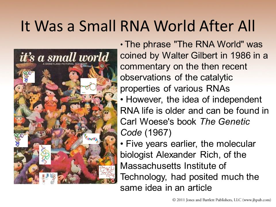 It Was a Small RNA World After All