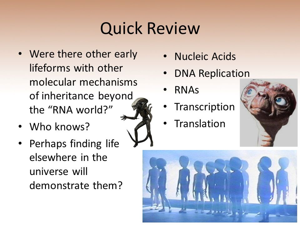 Quick Review Were there other early lifeforms with other molecular mechanisms of inheritance beyond the RNA world