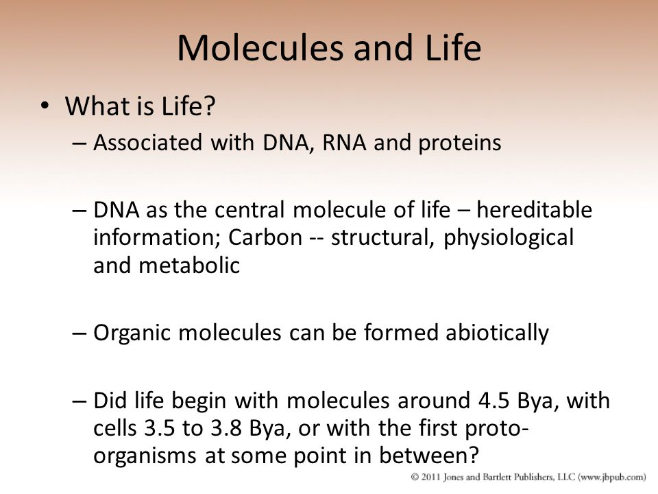 Molecules and Life What is Life Associated with DNA, RNA and proteins