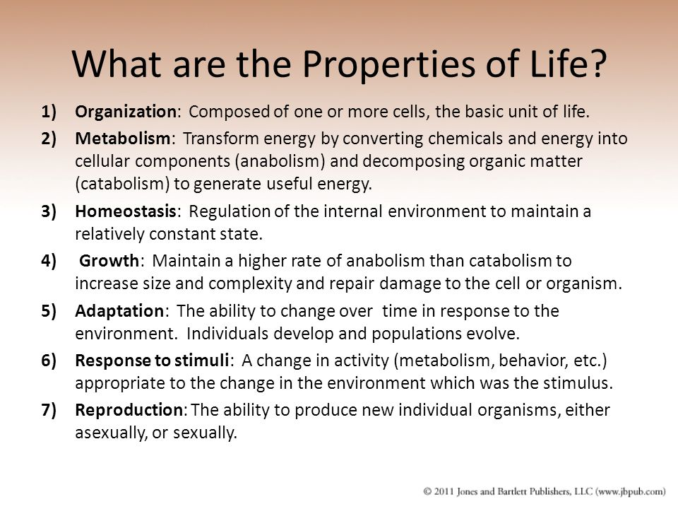 What are the Properties of Life