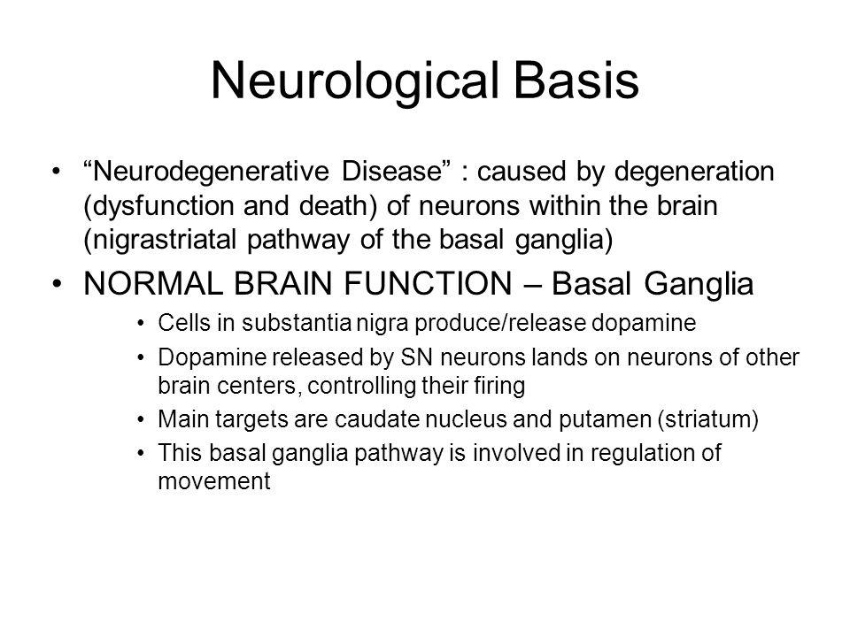 Neurological Basis NORMAL BRAIN FUNCTION – Basal Ganglia