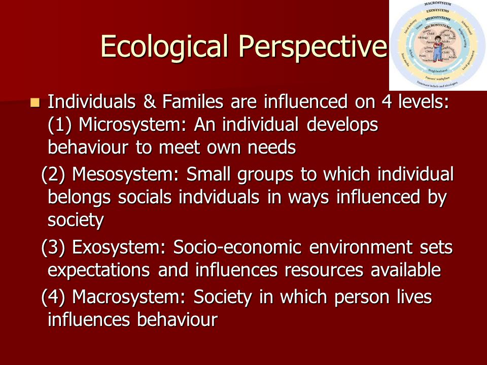 Ecological Perspective