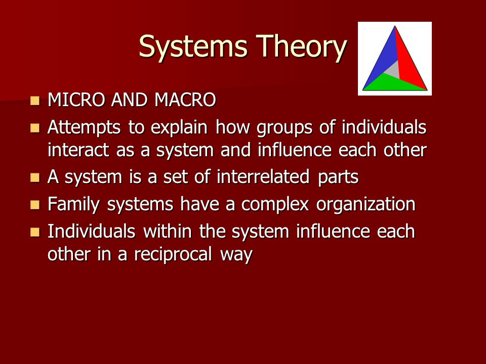 Systems Theory MICRO AND MACRO