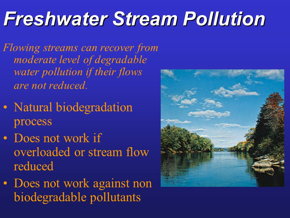 Freshwater Stream Pollution