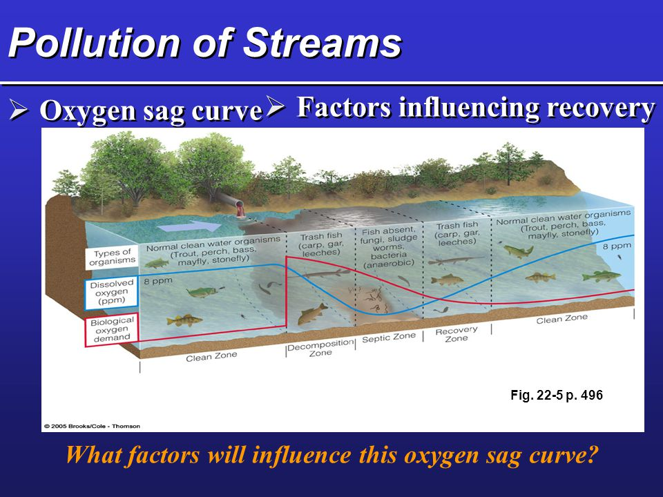 What factors will influence this oxygen sag curve