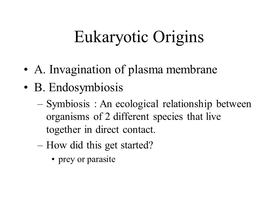 Eukaryotic Origins A. Invagination of plasma membrane B. Endosymbiosis