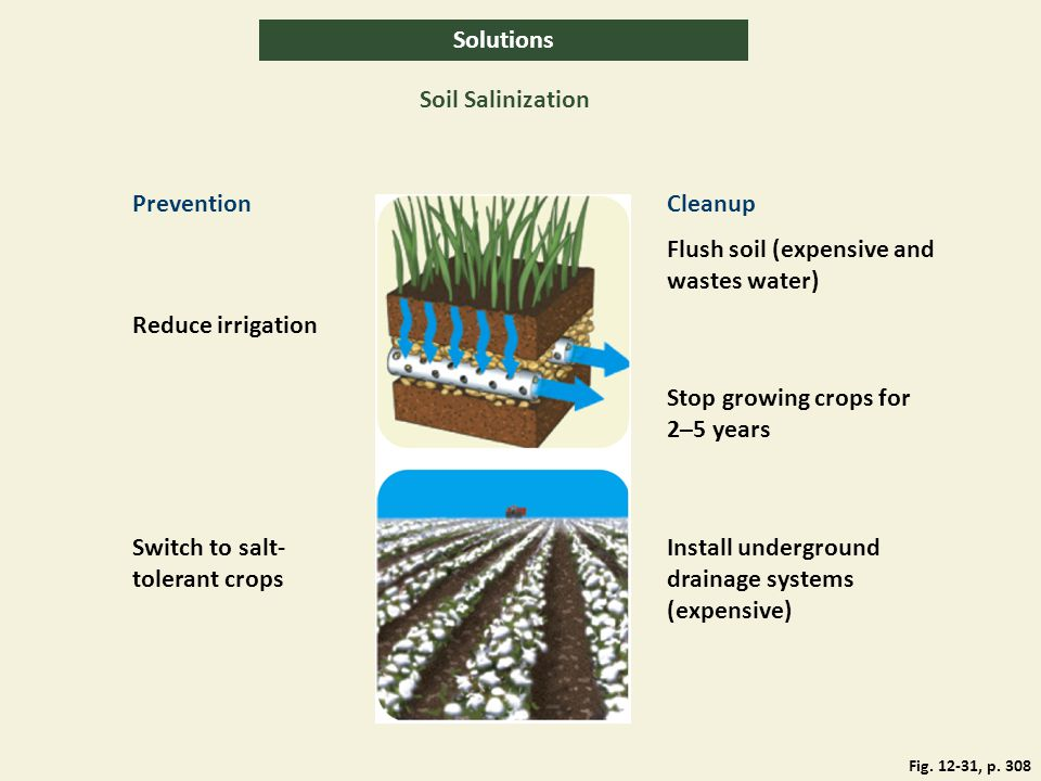 Solutions Soil Salinization