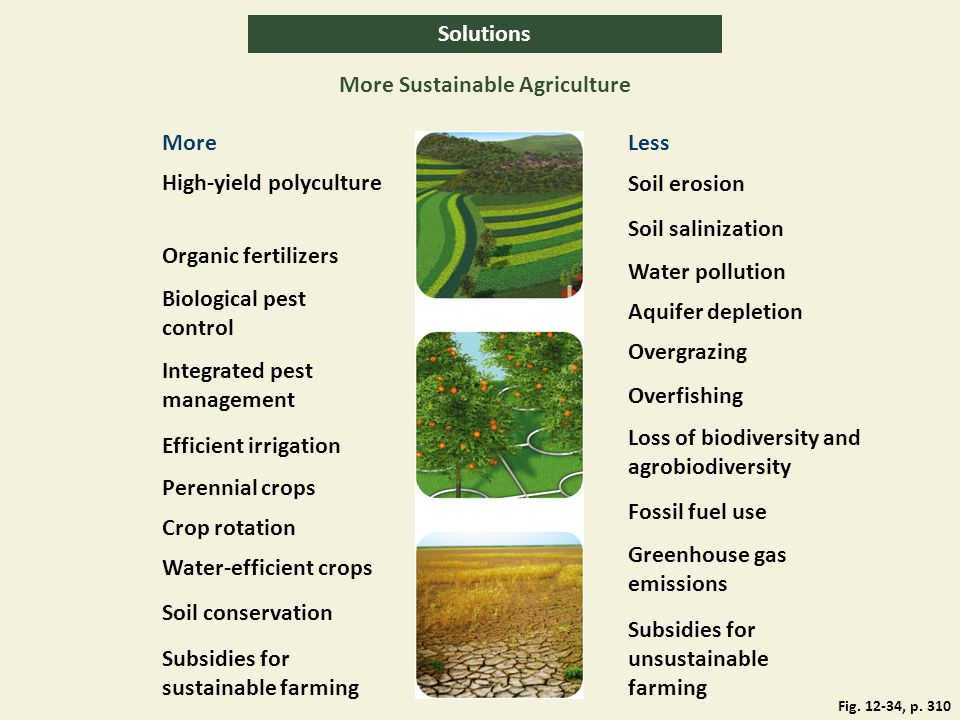 More Sustainable Agriculture