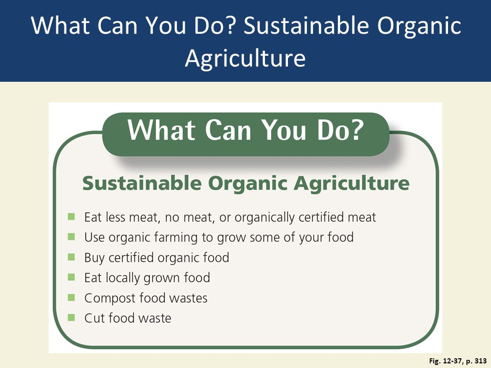 What Can You Do Sustainable Organic Agriculture