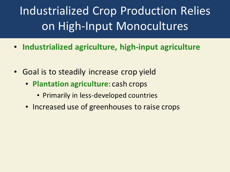 Industrialized Crop Production Relies on High-Input Monocultures