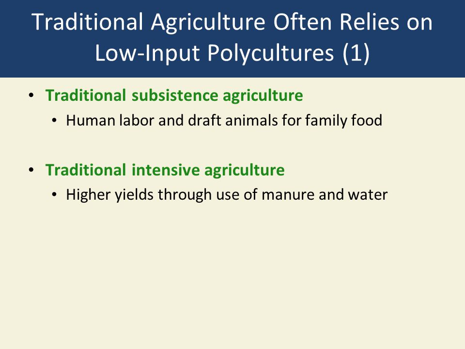 Traditional Agriculture Often Relies on Low-Input Polycultures (1)
