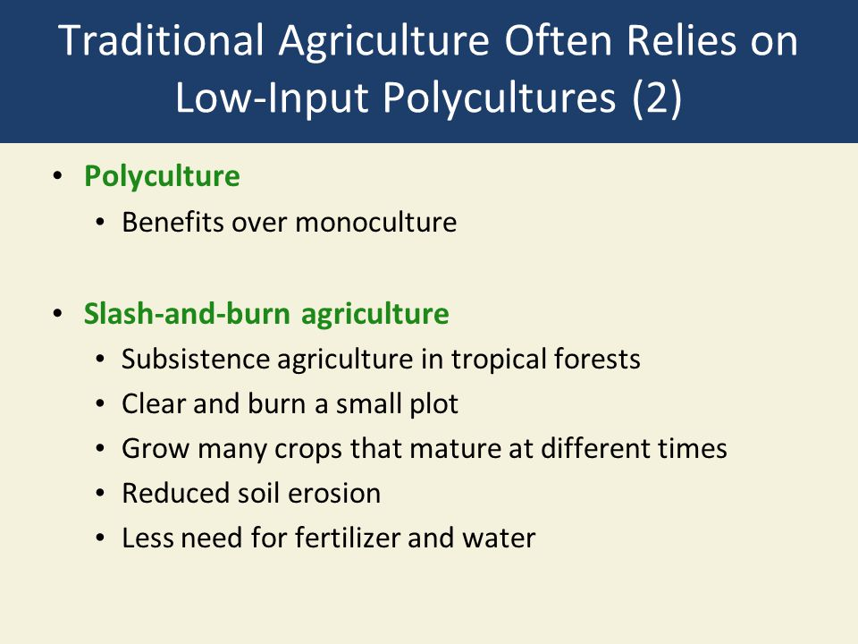 Traditional Agriculture Often Relies on Low-Input Polycultures (2)