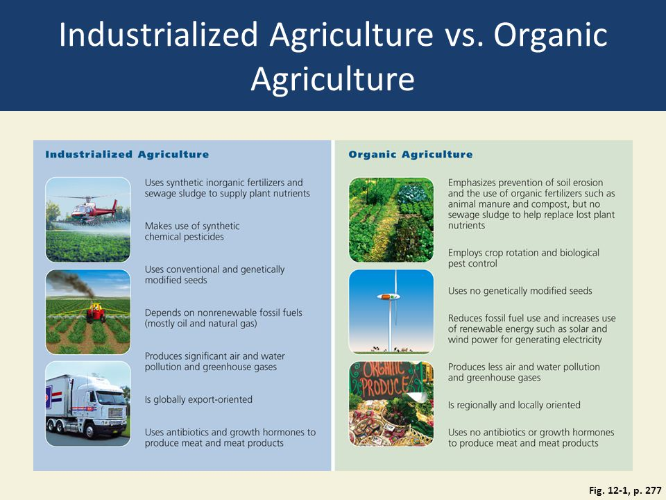 Industrialized Agriculture vs. Organic Agriculture