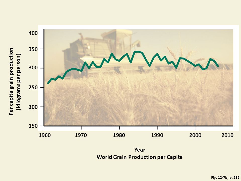 Per capita grain production (kilograms per person)