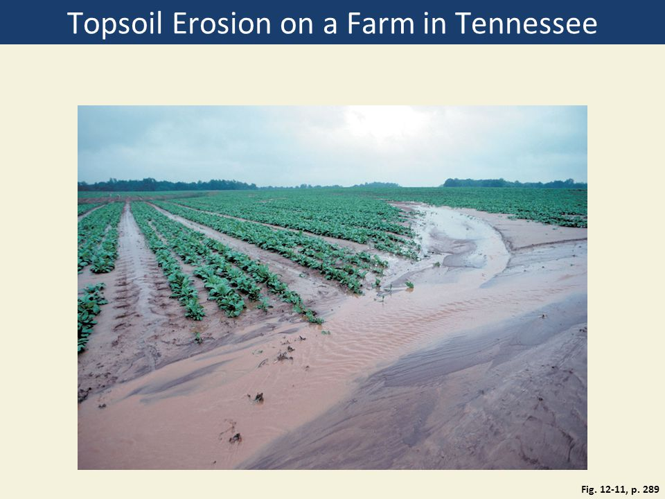 Topsoil Erosion on a Farm in Tennessee