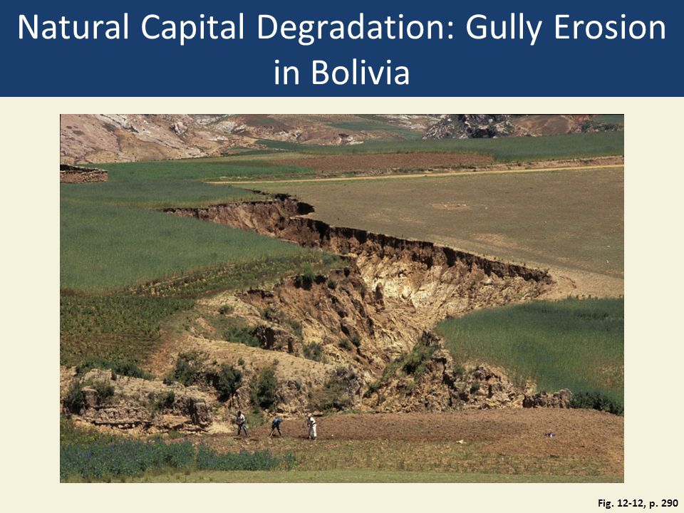 Natural Capital Degradation: Gully Erosion in Bolivia