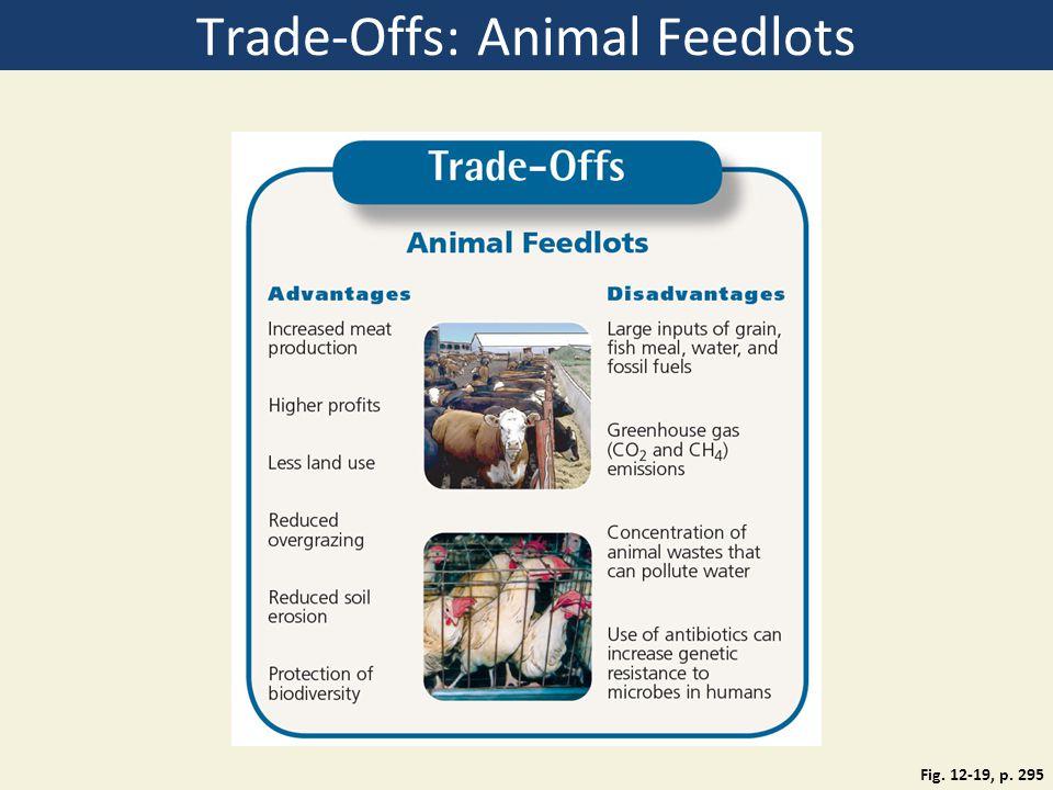 Trade-Offs: Animal Feedlots