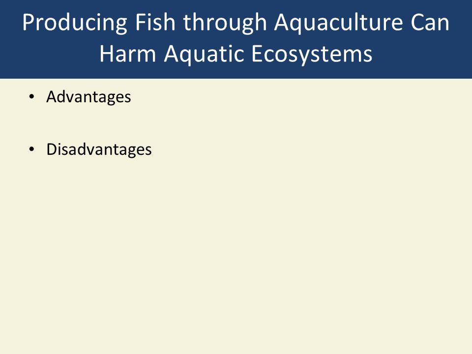 Producing Fish through Aquaculture Can Harm Aquatic Ecosystems