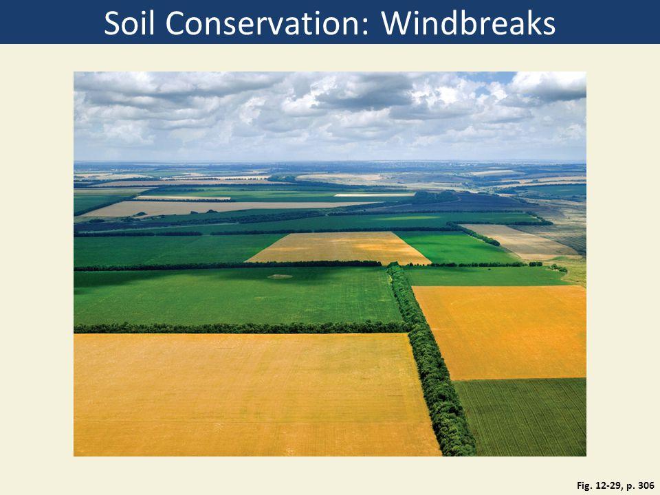 Soil Conservation: Windbreaks