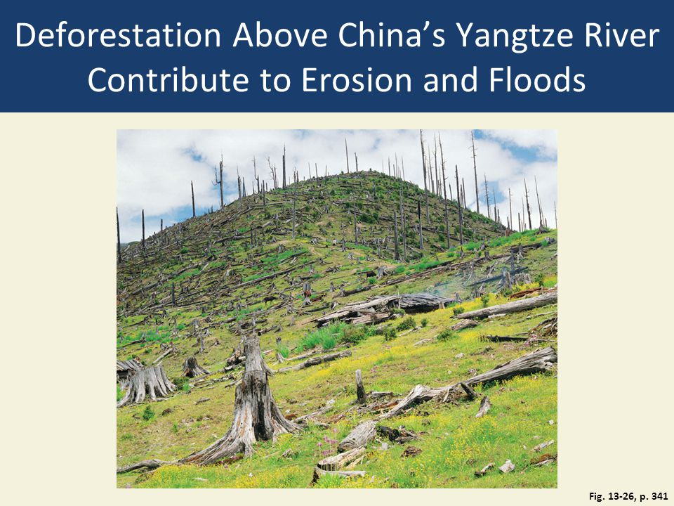 Deforestation Above China's Yangtze River Contribute to Erosion and Floods