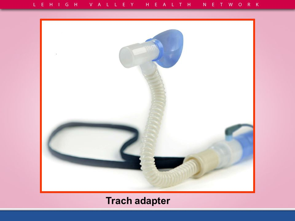 Trach adapter