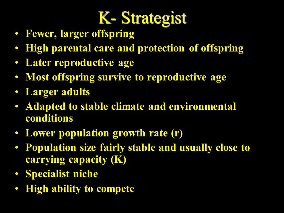 K- Strategist Fewer, larger offspring