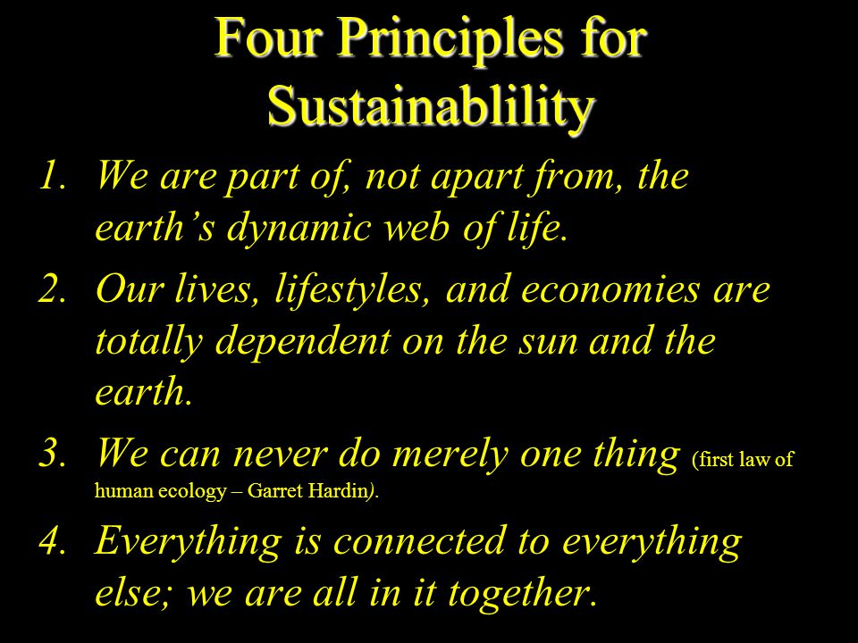 Four Principles for Sustainablility