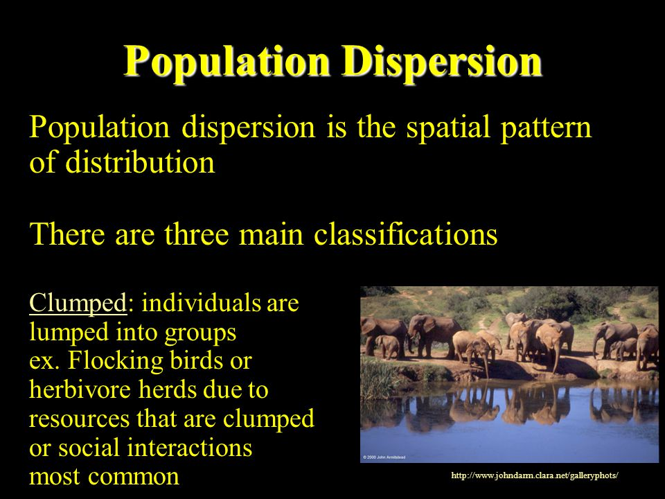 Population Dispersion