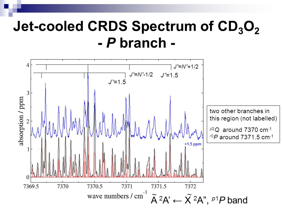 Jet-cooled CRDS Spectrum of CD3O2 - P branch -