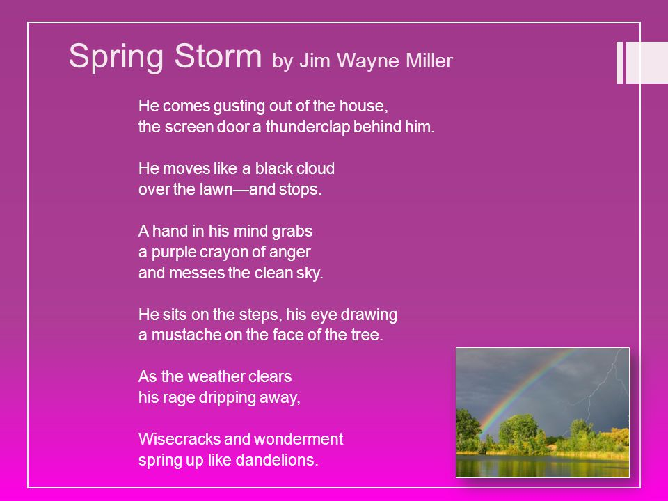 Spring Storm by Jim Wayne Miller