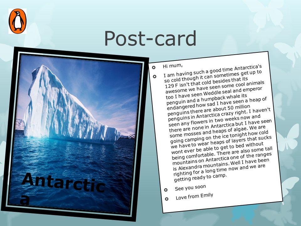 Post-card Antarctica Hi mum,