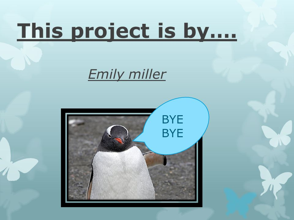 This project is by…. Emily miller