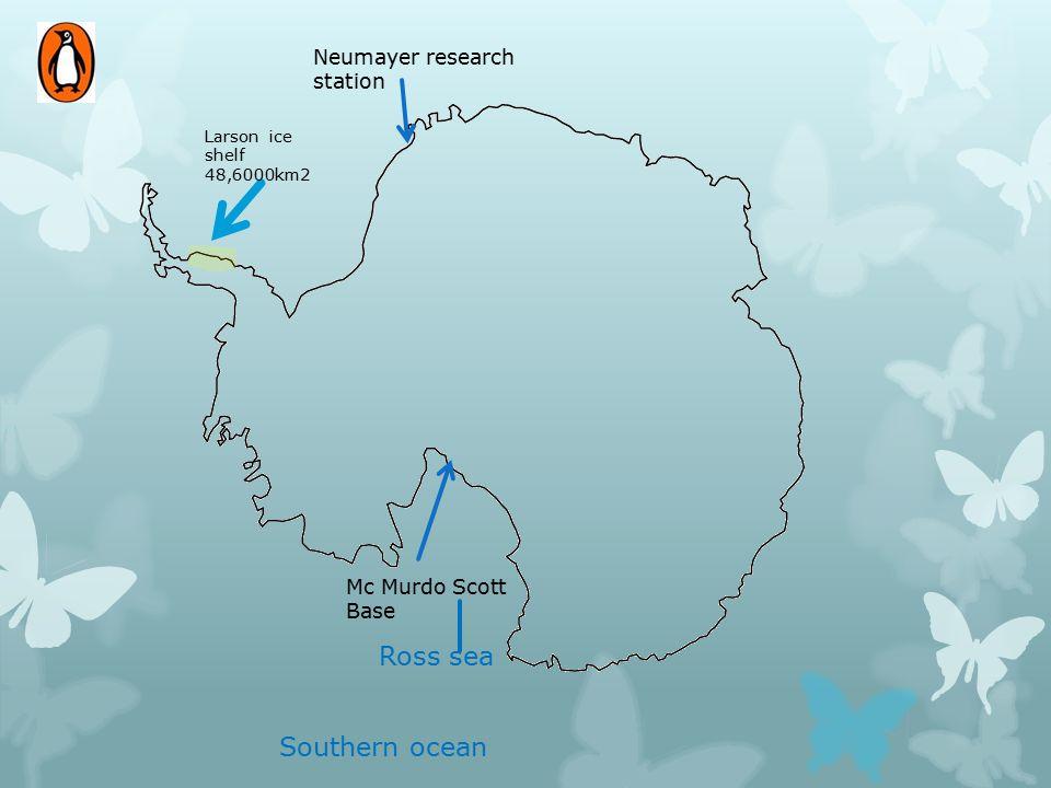 Ross sea Southern ocean Neumayer research station Mc Murdo Scott Base