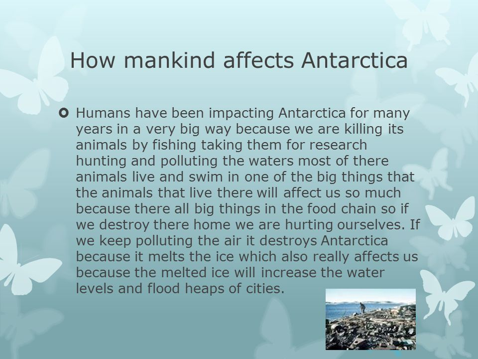 How mankind affects Antarctica