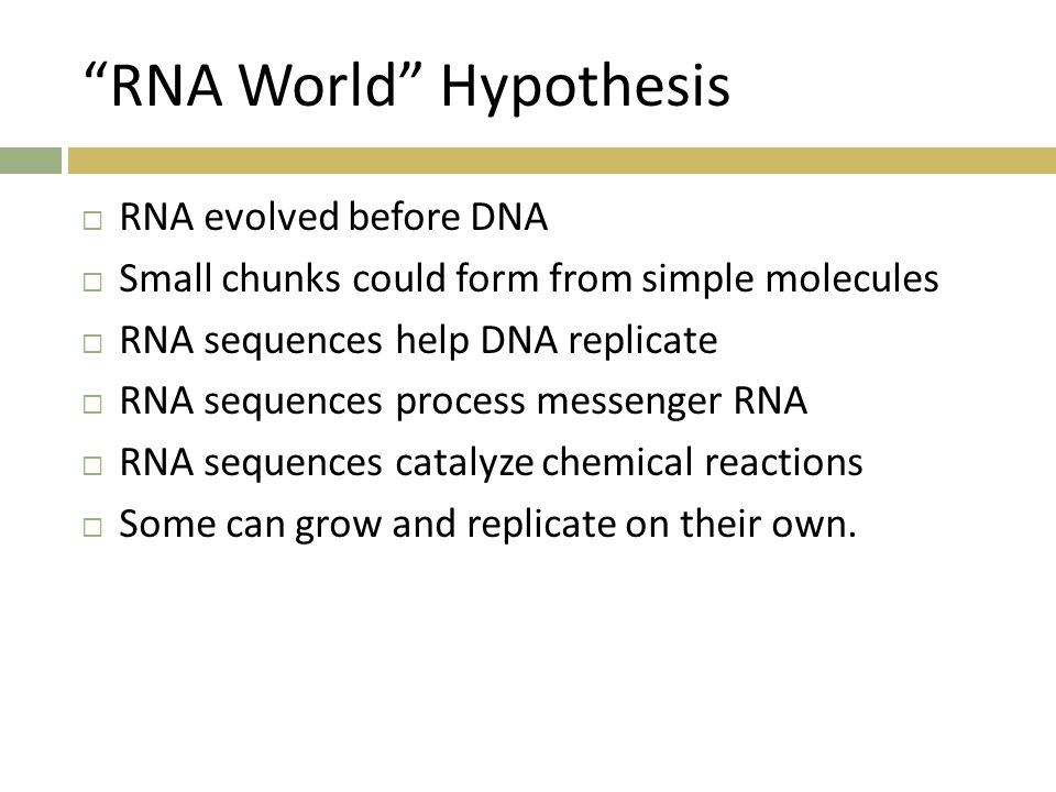 RNA World Hypothesis